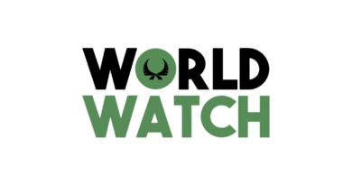 World Watch: Resolution Chains and Voting Activity